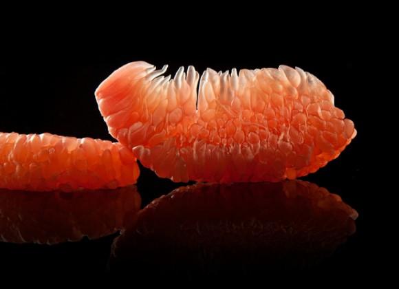 Modernist-Cuisine-Fruit-580x420