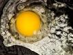 Modernist-Cuisine-Egg-580x352